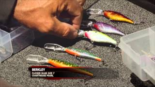 Fishing Tip - Berkley Flicker Family Expands S11E09