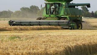 Канада 719: Работа в сельском хозяйстве(Отвечаю на вопрос: