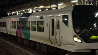 [2019.3.15] E257系特急あずさ30号 千葉行ラストラン 千葉駅入線