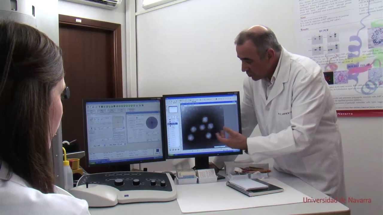 Download Pandemias: nuevas infecciones virales - Ud.1: ¿Qué es un virus? MOOC