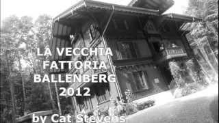 Gambar cover VECCHIA FATTORIA