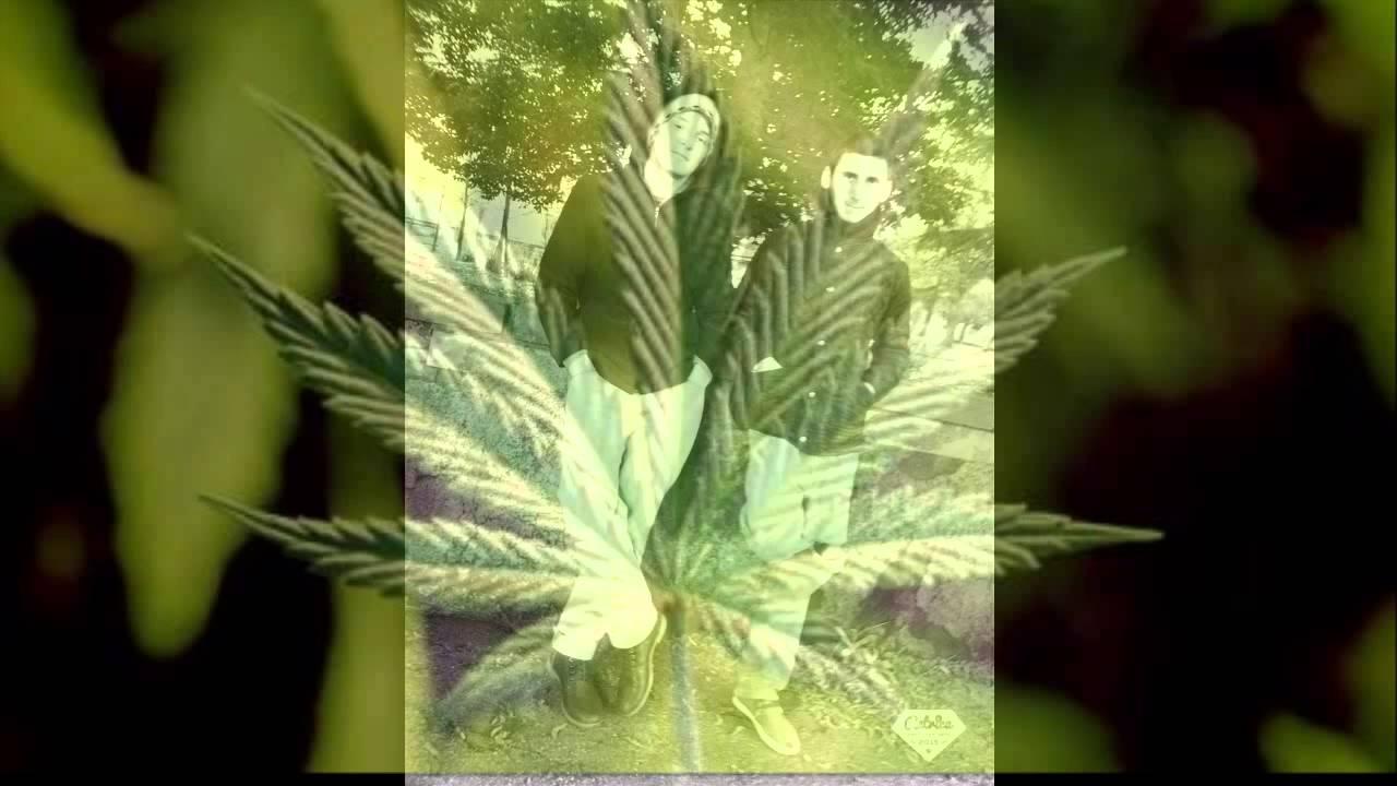 Мая жизнь марихуана nirvana семена конопли
