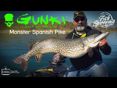 Gunki TV - Monster Spanish Pike - Fish Spotting (French Subtitles)