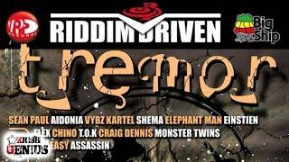 Einstein - Rise Up Dem - Tremor Riddim (Official Audio 2007)