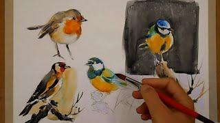 WATERCOLOR-PAINTING BIRDS-PINTANDO PÁJAROS