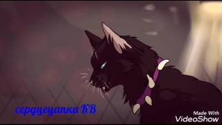 Коты воители : битва за лес