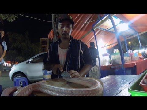 EATING COBRA SNAKE in Jakarta