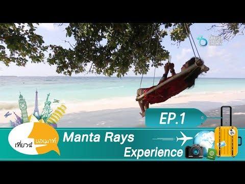 เที่ยวนี้ขอเมาท์ ตอน Manta Rays Experience EP 1