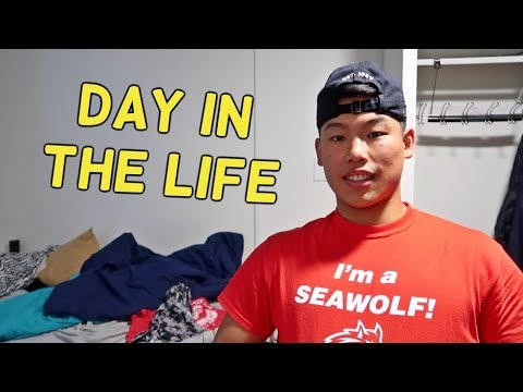 Day In The Life | Stony Brook University Edition | Seawolves