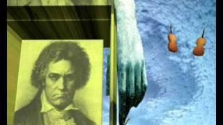 Ludwig van Beethoven - Ninth Symphony  - II Movement - Scherzo: Molto vivace - Presto