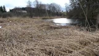 Kocher Bach entlang zum Säg,-& Mühlenweiher Quellwasser kommt aus zwei Quellen-Kocher Löcher