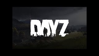 DayZ - When two groups meet over the same car