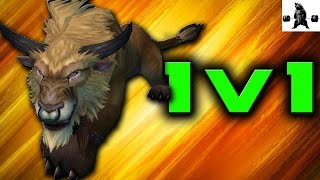 Feral vs Randoms | WoW Legion
