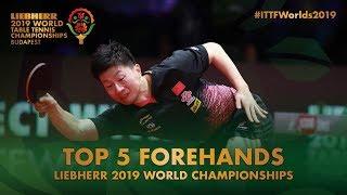 Top 5 Forehand Shots | Liebherr 2019 World Table Tennis Championships