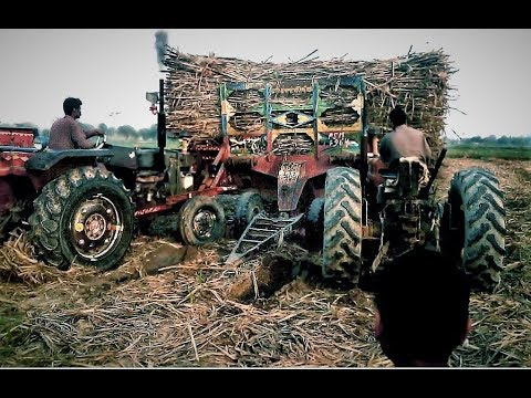wonderful tractor driving skills -massey ferguson 265 special pulling out stuck trolly