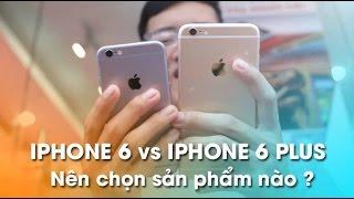 Tư vấn iPhone 6 và iPhone 6 Plus - Nên chọn mua sản phẩm nào?