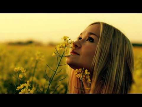 Perfect Peace  Laura Story  with Lyrics