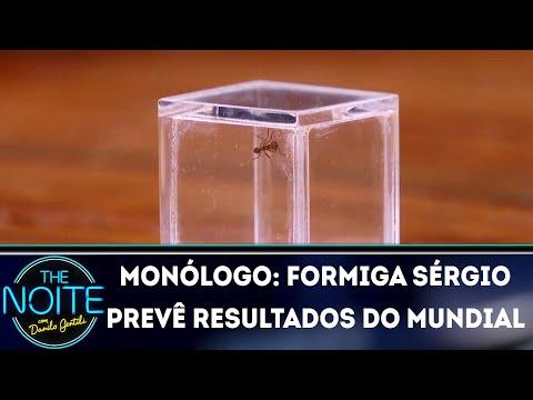 Monólogo: Formiga Sérgio prevê resultados da Copa no The Noite | The Noite (02/07/18)