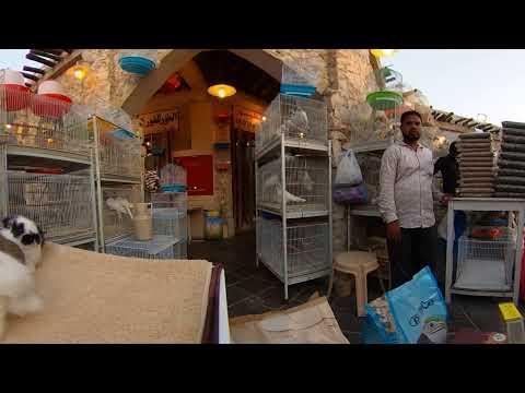 360º Video 4K- Doha/Qatar Bird Market Souq Waqif