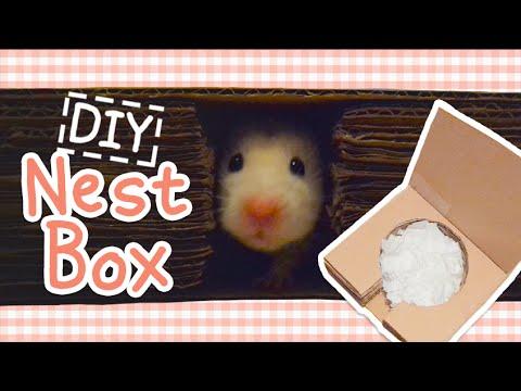 Super Simple Cardboard Nestbox ☆HAMSTER DIY☆