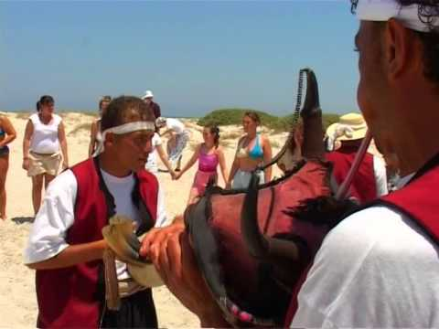 Flamingo Island Djerba - Barclay's Group Travel