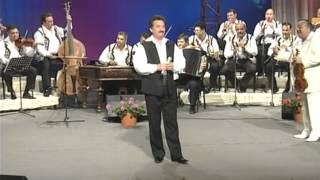 Petrica Mitu Stoian - concert aniversar 25 ani de cariera  - partea I