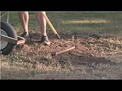 Grass & Lawn Maintenance : How To Plant Pasture Grass Seed - Youtube