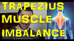 hqdefault - Upper Back Pain Muscle Imbalance