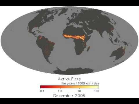Wildfires (MODIS) on NASA's Terra satellite