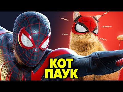 Человек паук мультфильм онлайн новый