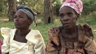 Forestry in Uganda: Connecting communities to power