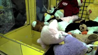 IMPOSSIBLE CRANE GAME WIN: The Truth