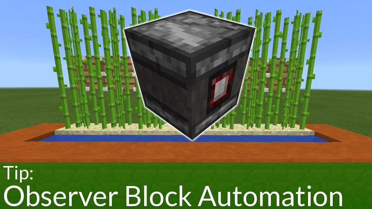 How To Build An Automated Sugar Cane Farm With Observer Blocks In Pe Youtube