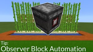How To Build an Automated Sugar Cane Farm With Observer Blocks in PE