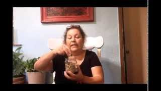 Easy cleanse to remove worms from the body (Mugwort)
