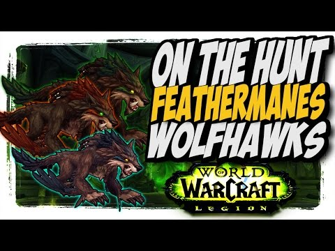 """Feathermanes Wolfhawks!! Common to Rare hunter pets """"On The Hunt"""" WoW Legion patch 7.2"""
