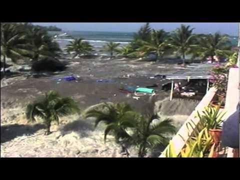 A Family Survives Deadly Tsunami