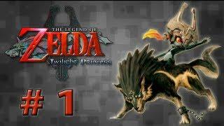 Guia Zelda - Twilight Princess - # 1