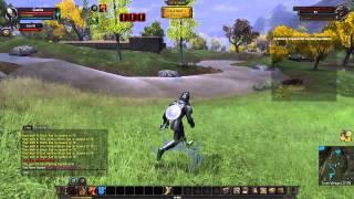 Vanguard: Saga of Heros Gameplay - Max Settings