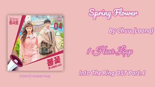 [1 HOUR /1시간] Spring Flower | Chuu (Loona) | Into The Ring .OST Part. 4 | 1 Hour Loop