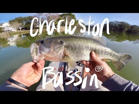 Paddleboard fishing for Large Mouth bass in Charleston, SC