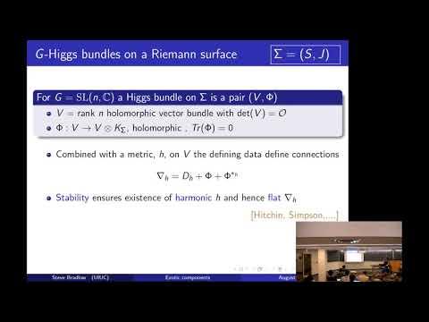 Steven Bradlow - Exotic components of surface group representation varieties