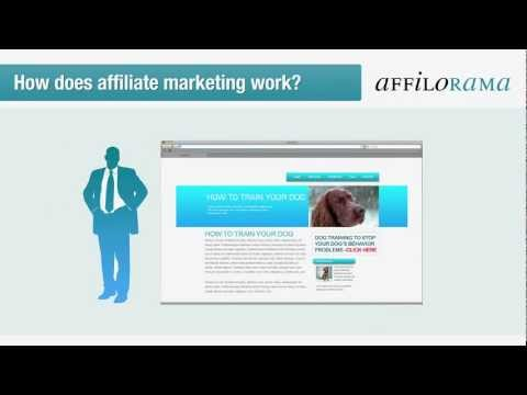 Make Money from Affiliate Programs | Free Affiliate Training Course