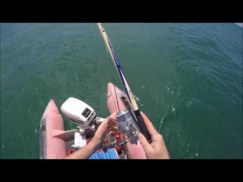 Pesca alle orate da natante maggio 2017