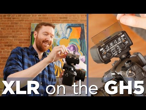 Plug XLR mics into the Panasonic GH5