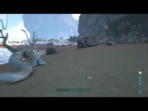 ArkSurvivalEvolved The center New Begin