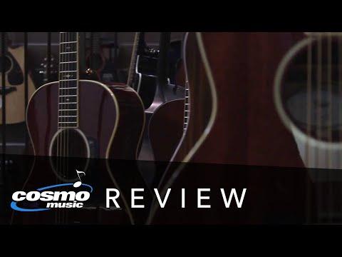 Taylor Mahogany Series Review