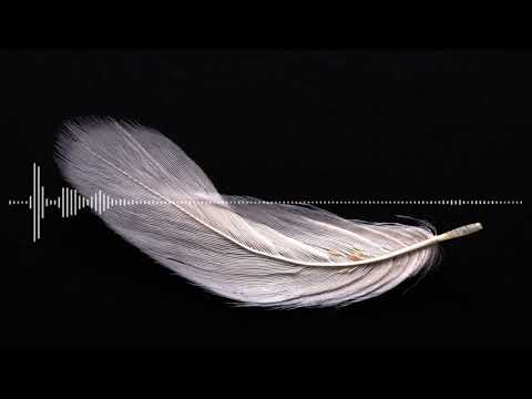 Brain Food Podcast Episode 2: The White Feather