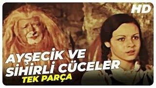 Ayşecik ve Sihirli Cüceler Rüyalar Ülkesinde | Türk Filmi Tek Parça