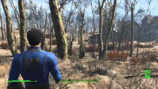Fallout 4 960 gtx Evga 2GB